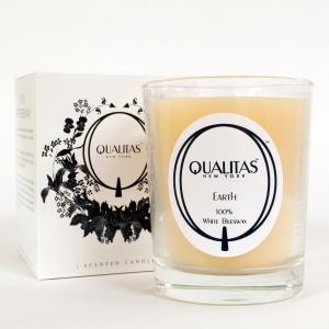 Qualitas_Earth